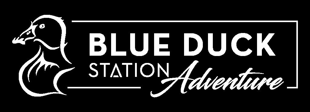 Adventure logo white
